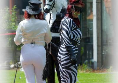 Ponymeet freehome-15 juni 2014-527