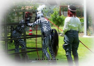Ponymeet freehome-15 juni 2014-626
