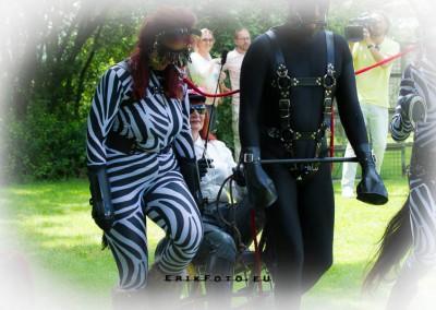 Ponymeet freehome-15 juni 2014-664